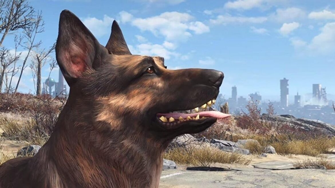 River, the real-life dog who inspired Dogmeat from Fallout 4, has passed away